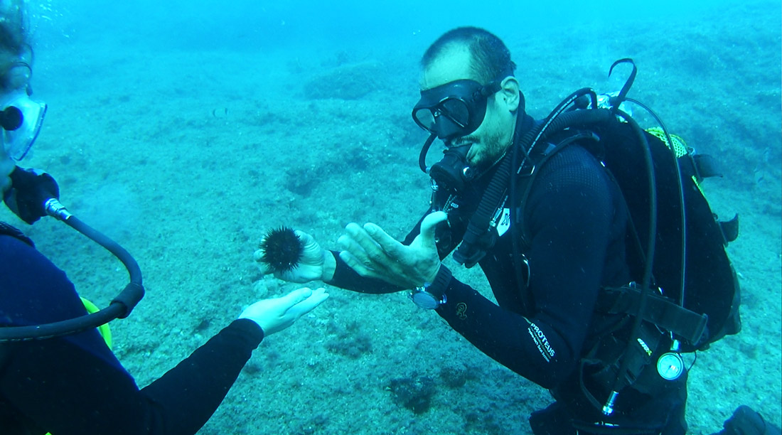 Benidorm Patrick Krueger tauchen diving Blogger germany Travelblog