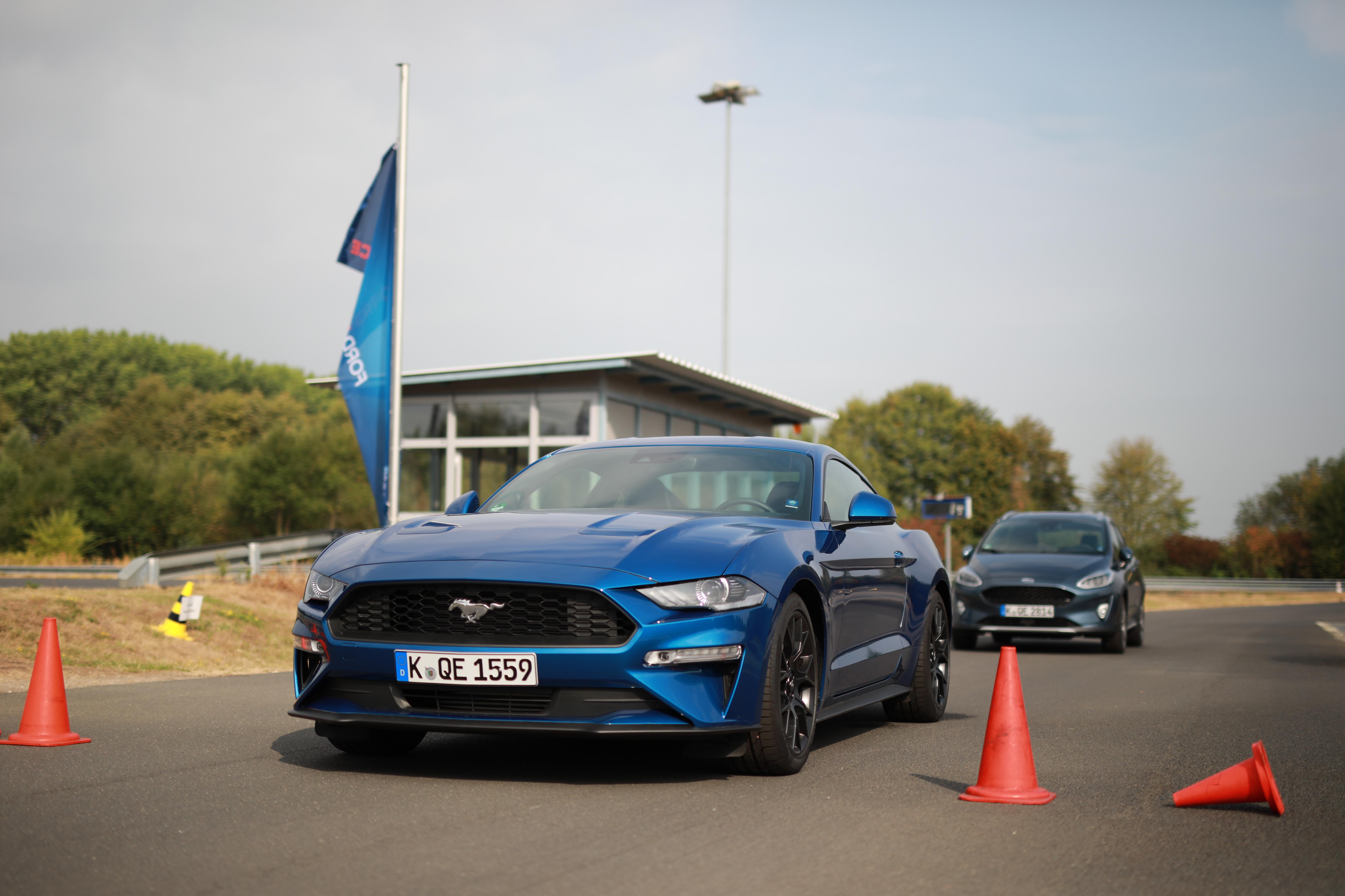 Bild: www.fotocruz.de für Ford Deutschland